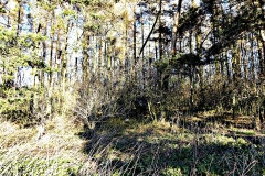 Geocaching - výpravy za keškami 11