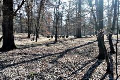 Geocaching - výpravy za keškami 45